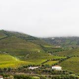 Ansichten der portugiesischen Natur Lizenzfreie Stockbilder