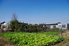 Ansichten des Bauernhofes Lizenzfreie Stockfotos