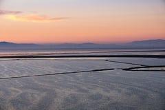 Ansichten des San Francisco Bay in Richtung zu Sutro-Turm bei Sonnenuntergang, Kojote-Hügel regionaler Park, Fremont, Kalifornien stockbild