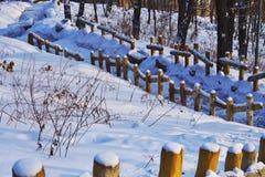 Ansichten des Schnees Stockfoto