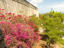 Ansichten vom Fort Nassau stockbilder