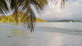 Ansichtwellen brechen auf der tropischen Insel; Strand Meereswellen auf der Trauminsel Seychellen; Zeitlupe stock video
