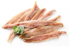 Ansjovis. Filet met orego op wit Stock Afbeeldingen