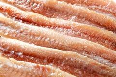 Ansjovismakro många bakgrundsklimpmat meat mycket Royaltyfria Bilder