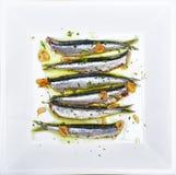 Ansjovissen in olijfolie worden, bij een lage temperatuur wordt gekookt gemarineerd die Royalty-vrije Stock Fotografie