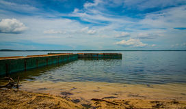 Ansluta in i havet Royaltyfri Foto