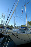 anslutade segelbåtar Royaltyfri Bild