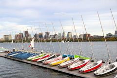 anslutade segelbåtar Regatta på floden Byggnader på andra sidan Arkivbild