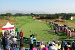 Anslutning för yrkesmässig golf för damer Royaltyfria Foton