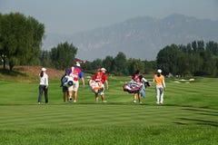 Anslutning för yrkesmässig golf för damer Arkivfoton