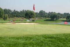 Anslutning för yrkesmässig golf för damer Arkivbild