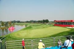 Anslutning för yrkesmässig golf för damer Royaltyfri Bild