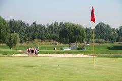 Anslutning för yrkesmässig golf för damer Arkivbilder