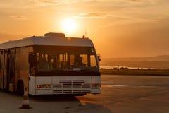 Anslutningsbussar på stoppet av flygplatsen i strålarna av inställningssolen Arkivfoton