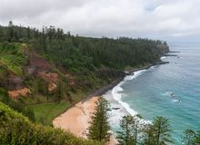 Anson Bay beach and Norfolk Pines, Norfolk Island stock images