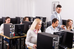 Anställda som arbetar på kontoret Royaltyfria Bilder