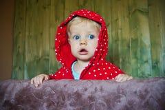 Anstarrendes Schätzchen, 8 Monate alte Lizenzfreies Stockfoto