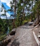 Ansteigender Weg in Yellowstone NP Stockfoto