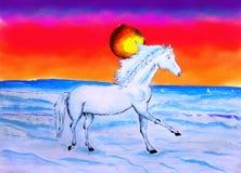 Anstrich des Pferds und des Sun-Sets Lizenzfreies Stockbild