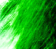 Ansturm des Grüns Stockbild