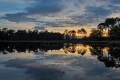 Ansumven, εθνικό πάρκο Kampina Στοκ εικόνα με δικαίωμα ελεύθερης χρήσης