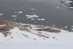 A Antártica - paisagem Fotos de Stock