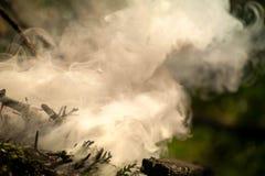 Antända branden Makro som skjutas av brasa, vitt varm glödakol för rök, och brand Arkivbilder