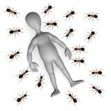 Ant vector illustration