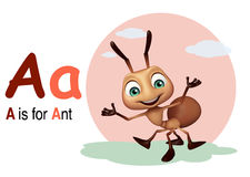 Ant with alphabate Stock Photos