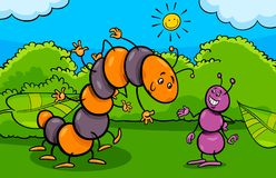 Ant And Caterpillar Insect Cartoon Characters Stock Photos