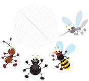 Ant, bee, spider and mosquito. The clip-arts of the colorful insects drawn in the children's style: ant, bee, spider and mosquito vector illustration