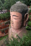 Ant Buddha in Leshan, Sichuan, China Royalty Free Stock Image