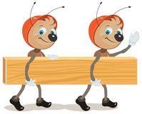 Ant builder. Two ants are board Royalty Free Stock Photo