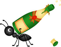 Ant carrying a champagne bottle Royalty Free Stock Images