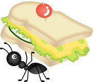 Ant Carrying Cheese Sandwich Stockbilder