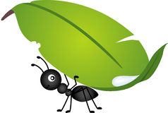 Ant carrying leaf Royalty Free Stock Photos