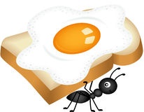 Ant carrying sandwich from fried egg Royalty Free Stock Image