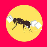 Ant Carrying Sugar Cube. Vector Illustration Stock Photos