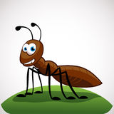 Ant cartoon character. Funny ant cartoon character  on white background Stock Photos
