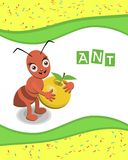 Ant from the collection of alphabet animals. For your educational insights Royalty Free Stock Images