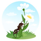 The ant crawls on a flower. Actions insects. Children's illustration Stock Images