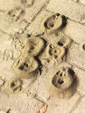 Ant crop circles Stock Image