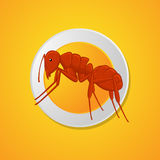 Ant Dish Royalty Free Stock Image