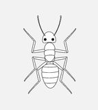 Ant Drawing Stock Photos