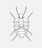 Ant Drawing. Retro Vector Illustration Stock Photos