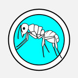 Ant Drawing Vector. Ant Insect Drawing Vector Illustration Stock Images