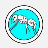 Ant Drawing Vetora Imagens de Stock