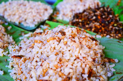 Ant eggs. Food from tropical forest in Thailand Royalty Free Stock Photography