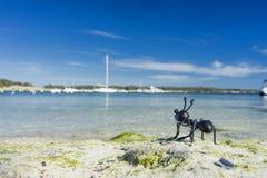 Ant figure Stock Photos