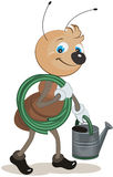 Ant gardener carries the hose and watering can Royalty Free Stock Photos